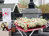 Почти тысячу цветов изготовили уральцы для благих дел на фестивале «Дни Белого Цветка»
