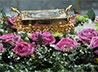 6 декабря всех Екатерин Преображенского благочиния приглашают в Пантелеимоновский храм на празднование Дня св. Екатерины