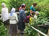 Слава чудотворных источников села Тарасково достигла Архангельска