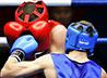 Соревнования по боксу среди казаков, посвященные Дню народного единства, пройдут в г. Богданович 8 ноября