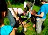 В восстановлении храма в честь свв. Флора и Лавра поучаствовали екатеринбургские следопыты