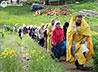 Сестринское паломничество в Боголюбскую обитель завершилось трудовым послушанием