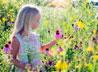 Свято-Симеоновская гимназия продолжает принимать работы на фотоконкурс «Мгновения лета»