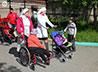 Волонтеры помогут колясочникам продлить лето