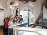 Юные прихожане храма Большой Златоуст побывали в Музее природы Урала