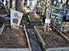 Начат сбор пожертвований на поддержание могил супруги и дочери сщмч. Сергия Увицкого
