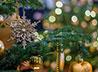 Рождество каменцы отметят праздником «Под Вифлеемской звездой»