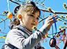 Воспитанники детского приходского лагеря в селе Троицкое украсили «Дерево добра»