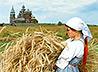 Насельницы Свято-Пантелеимоновской обители Краснотурьинска убирают урожай на монастырском поле