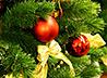 «Гирлянда добра» отправит детей на новогоднее представление