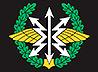 Митрополит Кирилл поздравил с профессиональным праздником связистов Центрального военного округа