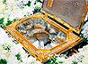 По храмам Екатеринбургской епархии переносится ковчег с мощами многих святых