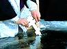 Мороз не помешал жителям Патрушей собраться на ночной Крещенский молебен