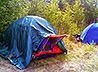 60 «разведчиков леса» побывали в православном палаточном лагере в окрестностях Тавды