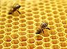 В Михаило-Архангельском храме освятят мед с личных пасек жителей Ачита