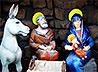 На территории Иоанно-Предтеченского Кафедрального собора Екатеринбурга установили Рождественскую ель и вертеп