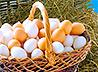 2 500 яиц пожертвовала нуждающимся екатеринбургская птицефабрика к празднику Пасхи