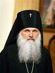 Архиепископ Викентий принял участие в международной конференции «Подвиг Урала в исторической памяти поколений»