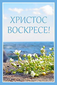 Сестры Ново-Тихвинского монастыря предлагают поздравить с Пасхой родных и друзей посредством виртуальной открытки
